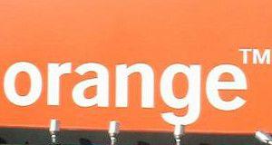 orange cropped