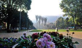 Bogota-Parque-93