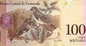 Venezuela Launches New Foreign Exchange to Plug Budget Deficits