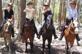 caballos a la par