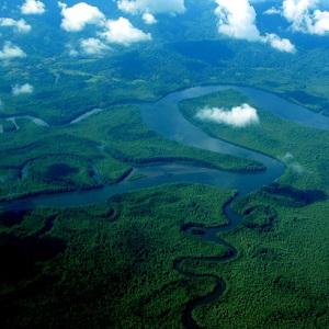 Costa rica wetlands
