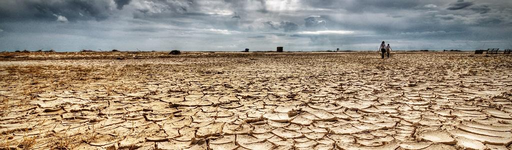 talent drought nearshore