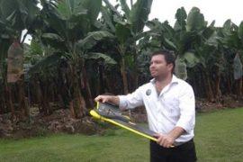 banana drones