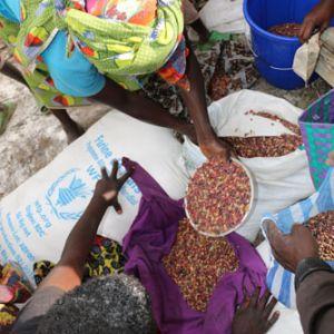 world food programme wfp